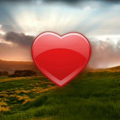 Uncovering the Essence of Love with Tibetan Numerology